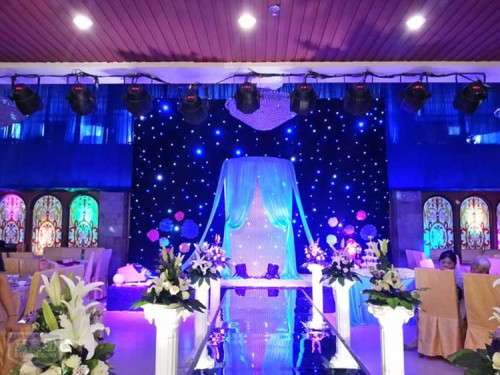 DMX LED Star Curtain Backdrop Blue White/ RGB Drop Cloth Curtain Lights