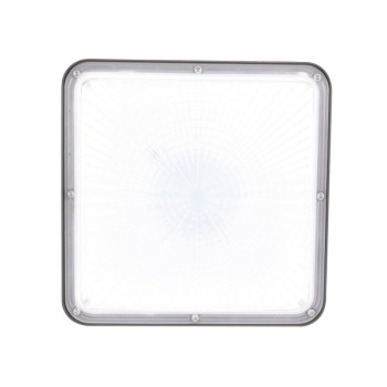 5 years warranty 100w industrial explosion proof LED Canopy Light for outdoor lighting