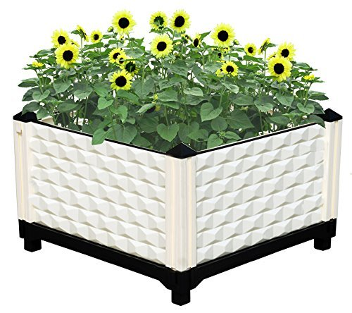 Flowerpot Planter Plant Pot Tomato Planter stand tray