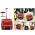 rolling trolley pet bag carrier with wheels