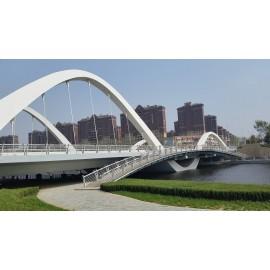 Puente paisajístico de estructura de acero de largo alcance con buena capacidad de carga