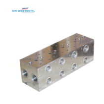 OEM Custom Percision CNC Machining Aluminum/Brass/SUS304 Hydraulic Manifold Manufacturer
