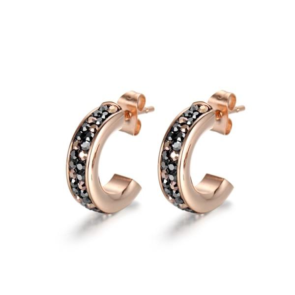 Crystal cubic zircon stainless steel earrings