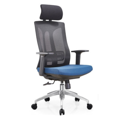 Height Adjustable Office Mesh Executive Chair With Aluminum/Nylon Base And PP Armrest(TL-A30-1)