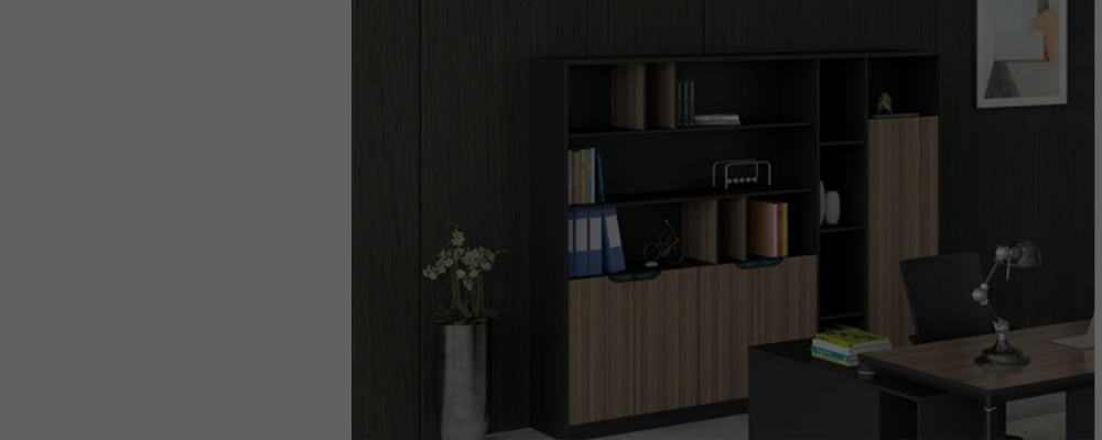 Wholesale Office Executive Cabinets