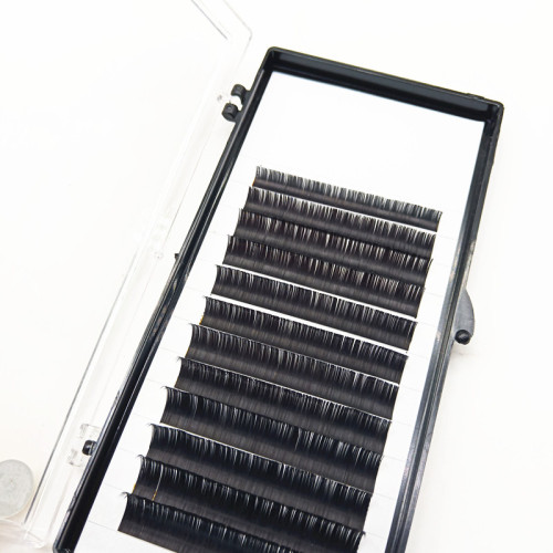 Professional Private label PBT silk eyelashes extensions Korean Lash extensions