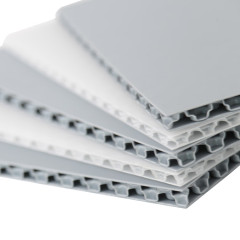Corona Treated Printable PP Polypropylene Plastic Honeycomb Panels for Sale