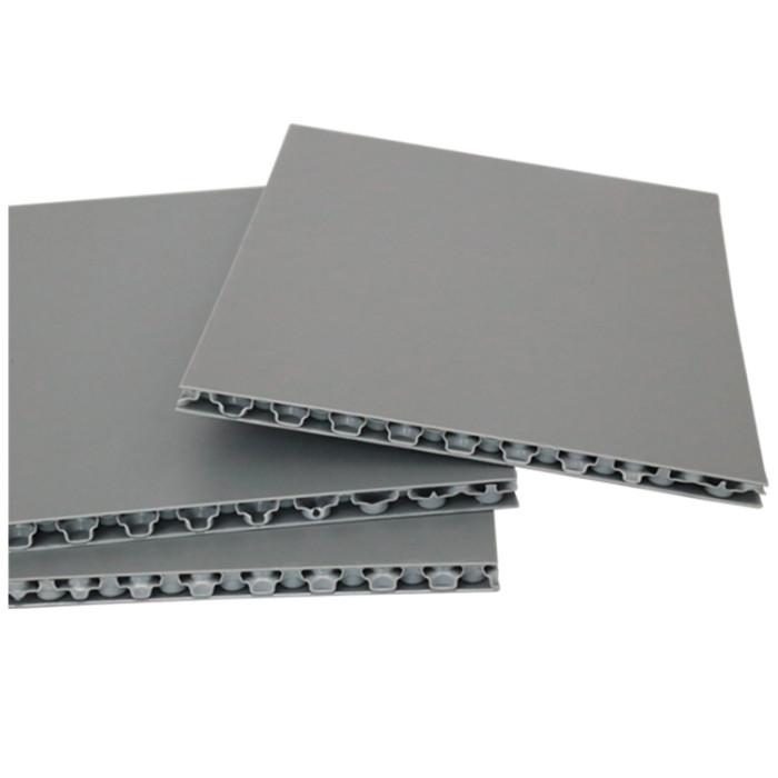 Light but High Impact Resistant Plastic PP Honeycomb Sheet for Van Body