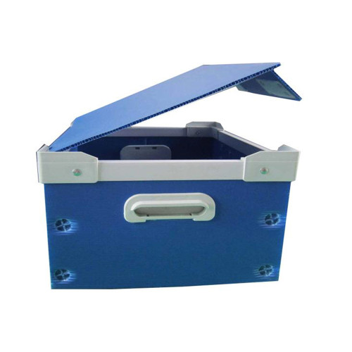 Flexible custom plastic pp corrugated & honeycomb products with Low Cost