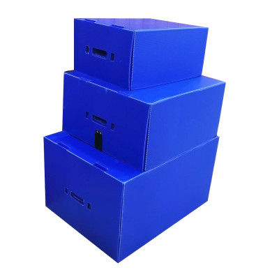 Recyclable Plastic PP Corrugated and Honeycomb Material Packaging Boxes