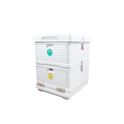 Polyethylene Beehive