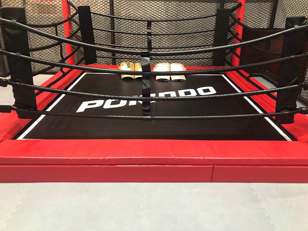 Suichang Pokiddo Trampoline Park boxing