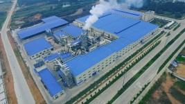 Guangzhou Topocean Import and Export Co., Ltd