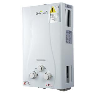 6L-12L flue type tankless gas water heater WM-FL04