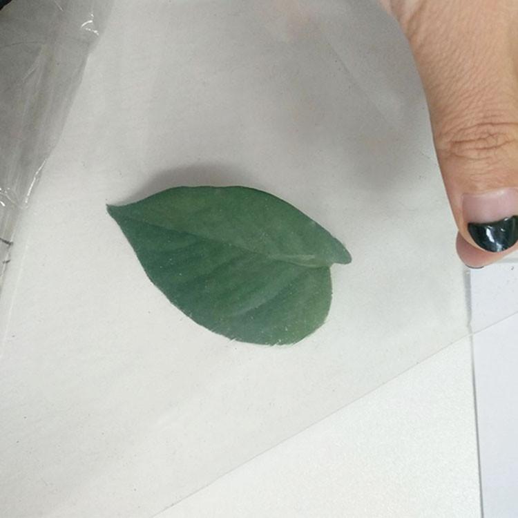 thin rubber sheet