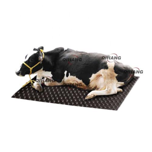 سمك 19mm 1.22m * 1.83m المتشابكة البقرة الحصير الحصان المطاط مستقر النوم