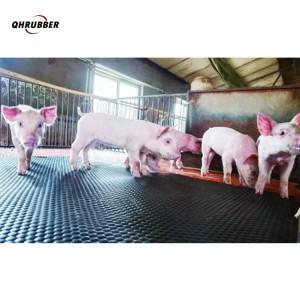 Schweinematten aus Gummi Für Schweine werden rutschfeste Gummimattenrollen verwendet