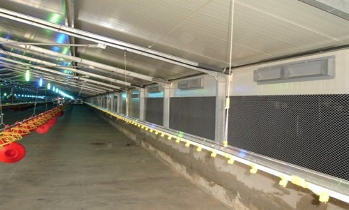 2019 New Design Prefab  Steel Structure Poultry House For Chicken Breeding