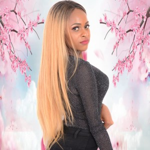 100% Peruvian Human Hair 180% Density 1b 27# Color Long Straight 24inch 13x4 Lace Front Wigs