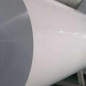 Zheflon® FL2624 PVDF -Separator Grade