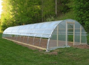 Greenhouse Film &Cover