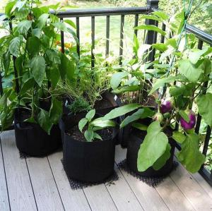 Plant Nursery Grow Bags
