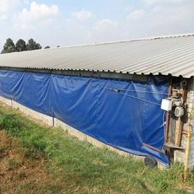 Poultry House Curtain/Poultry Side Curtain