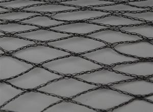 Extruction Net
