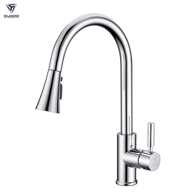 Pull Out Sprayer Kitchen Faucets Kitchen Sink Taps Faucet Popular Style