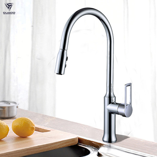 OUBAO High Arch Kitchen Faucet With Pull Out Spray Head For Kitchen Sink