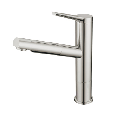 OUBAO Brushed Nickel Single Handle Kitchen Faucet with Pull Out Sprayer