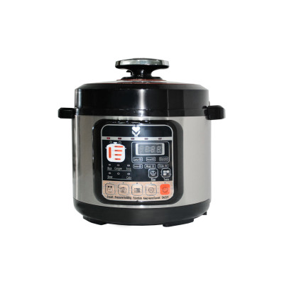 Talking Braille Electric Pressure Cooker