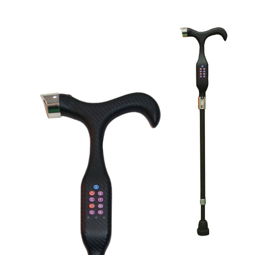 GPS Walking Stick