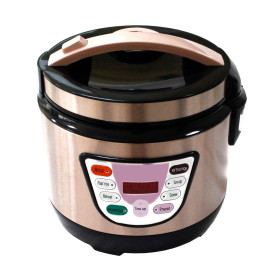 Micro Computer Electric Cooker