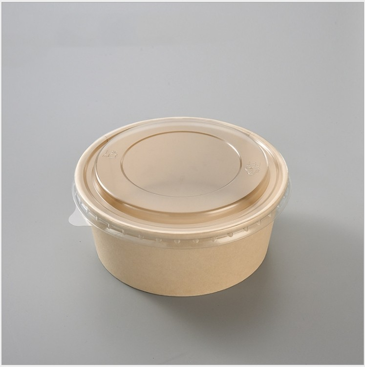 environmental health pulp biodegradable bowl