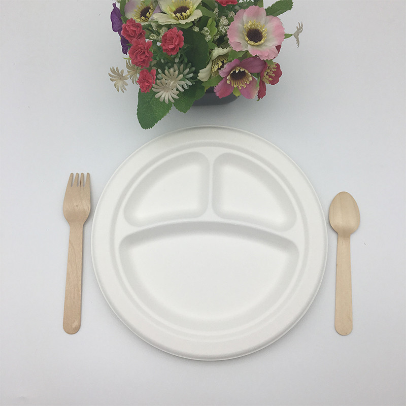 round Sugar cane pulp biodegradable plate