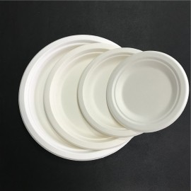 Coffee house OEM Food grade Bagasse paper plate wholesale