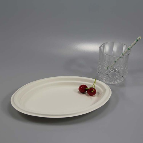 注文のクリスマスの使い捨て可能なテーブルウェアセットの誕生日パーティーの楕円形の紙皿