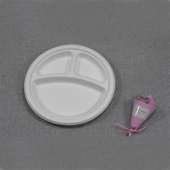 Customized Disposable Birthday Party Bio-degradable Sugarcane Bagasse Pulp Paper Plate
