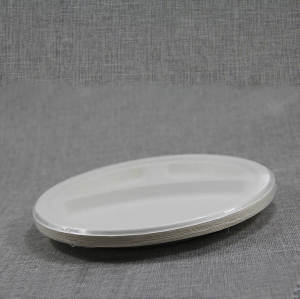 Customized Disposable Bio-degradable Sugarcane Bagasse Pulp Paper Plate