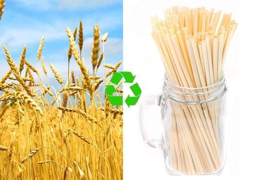 20cm天然生分解性コーヒージュースストロー用100%堆肥化可能小麦ストロー