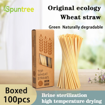 100per Box 5mm natural health and environmental protection degradable safe long wheat straw