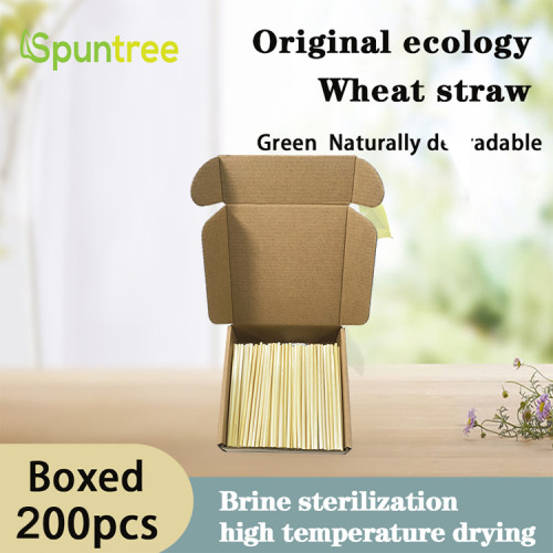航空機用ボックス入り飲料ストローバーレストラン用の元の生態学的な天然小麦ストロー