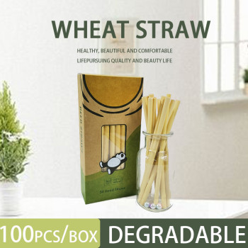 Reed stem plant bamboo straw eco-friendly milk tea cold drink coffee disposable creative export