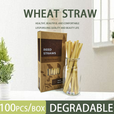 Reed stem natural plant milk tea coffee creative reed straws