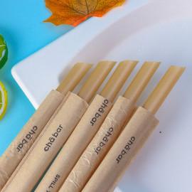 Compostable fiber biodegradable bagasse sugarcane sugar cane straws