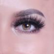 Nuevo estilo de moda grueso rizado reutilizable Wispy Real Mink Lashes para maquillaje de mujer