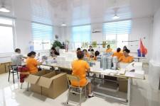 Qingdao Cooco Lashes Eyelashes Manufacturer Co., Ltd