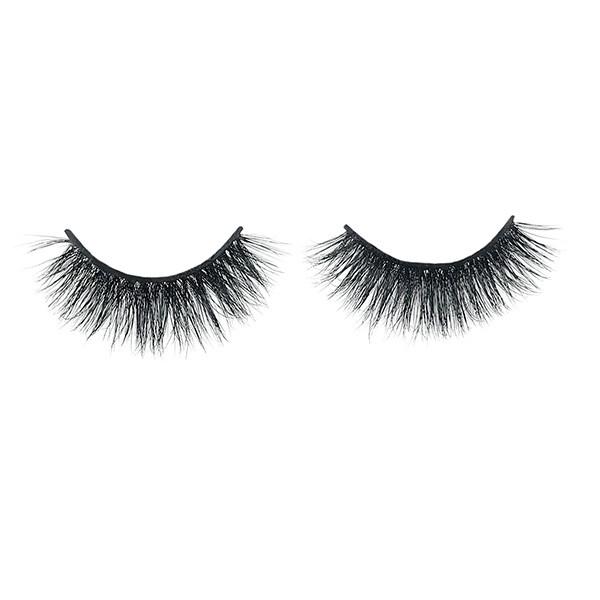 Plastic Boxes Sample Natural Eyelashes Human Hair Mink Lashes With Eyelash Tool