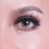 Ranking the Top 3 Best Premium Synthetic Lashes